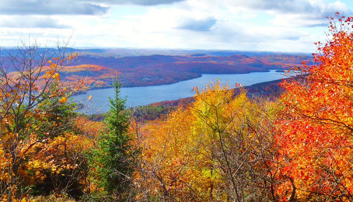 The beautiful autumn colours in Mont Tremblant.