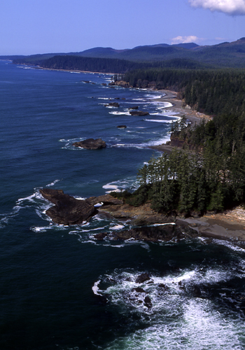 The West Coast Trail on Vancouver Island, British Columbia. Image courtesy Tourism British Columbia.