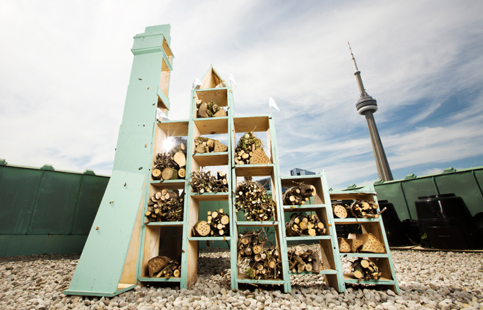 The Pollinator Bee Hotel on the rooftop of the Fairmont Royal York in Toronto.