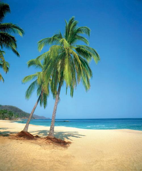 A beach in Puerto Vallarta. Image courtesy Transat.