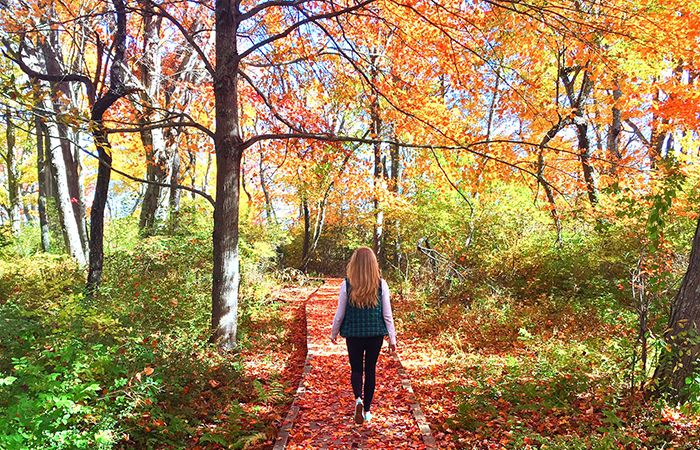 You can't resist the fall colours of Kennebunk, Maine. All photos by Natalie Taylor.