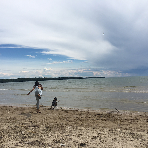 One of the dog-friendly beaches in Sandbanks Provincial Park