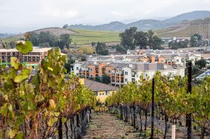 Napa Valley: How to Be Active in Wine Country