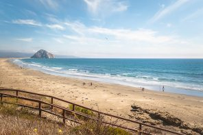 High on Happiness on California's Highway 1